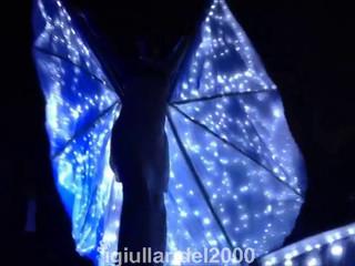Danzatrici farfalle luminose per matrimonio