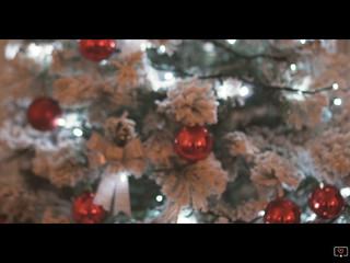 Tenuta Fabiana...Natale