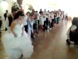 Matrimonio - Pingu dance