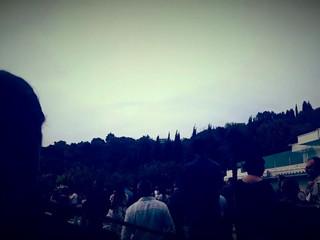 Tenuta Cipressi e Olivi