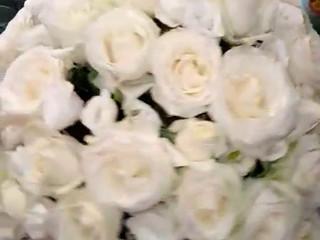 FlowVin's fiorista Bellotti